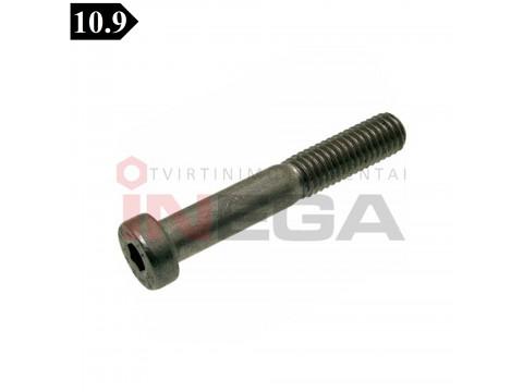 Varžtai žema cilindrine galvele, vidiniu šešiakampiu DIN7984, metriniu standartiniu sriegiu, plienas, 10.9 klasė, be padengimo