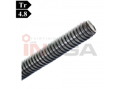 Sriegti strypai trapeciniu sriegiu ~DIN976, C15 plienas, 4.8 klasė, be padengimo