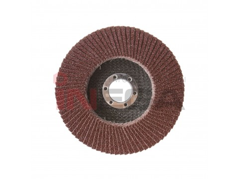 Žiedlapinis šlifavimo diskas 125*22mm